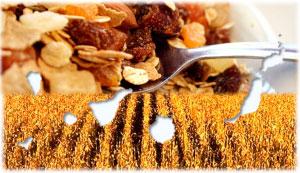 Cereales de Canarias: 7 Consejos para elegir el mejor desayuno de cereales