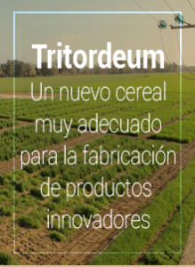 Tritordeum, Nuevo Cereal con Ventajas Nutricionales